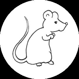 Rat de Musée